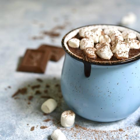 Toasted Marshmallow Hot Chocolate