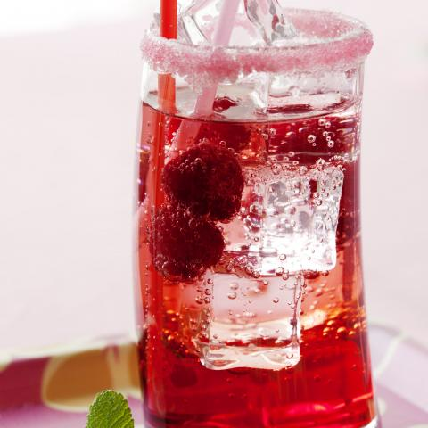Sugar Free Raspberry Italian Soda