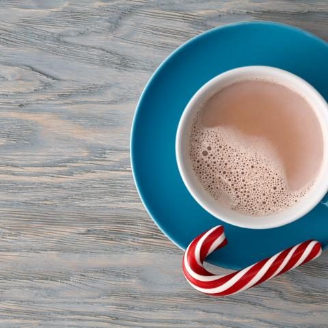 Sugar Free Peppermint Hot Chocolate