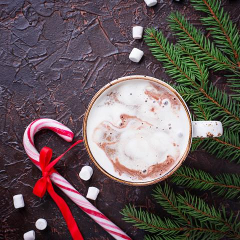 Sugar Free Peppermint Mocha