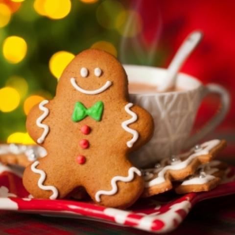 Gingerbread Steamer