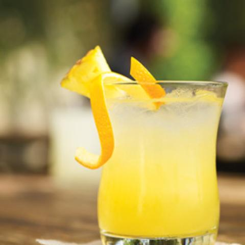 Sugar Free Lemon Handcrafted Soda