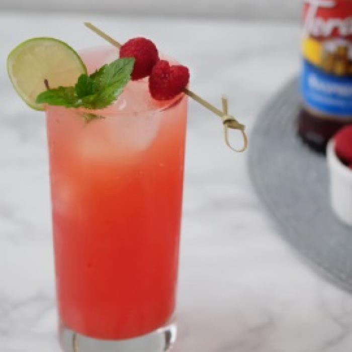 Raspberry Gin Refresher