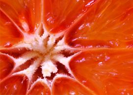 Blood Orange Sunrise image