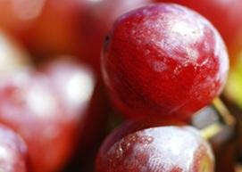 Grape Lemonade image