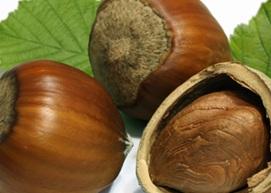 Hazelnut Latte image